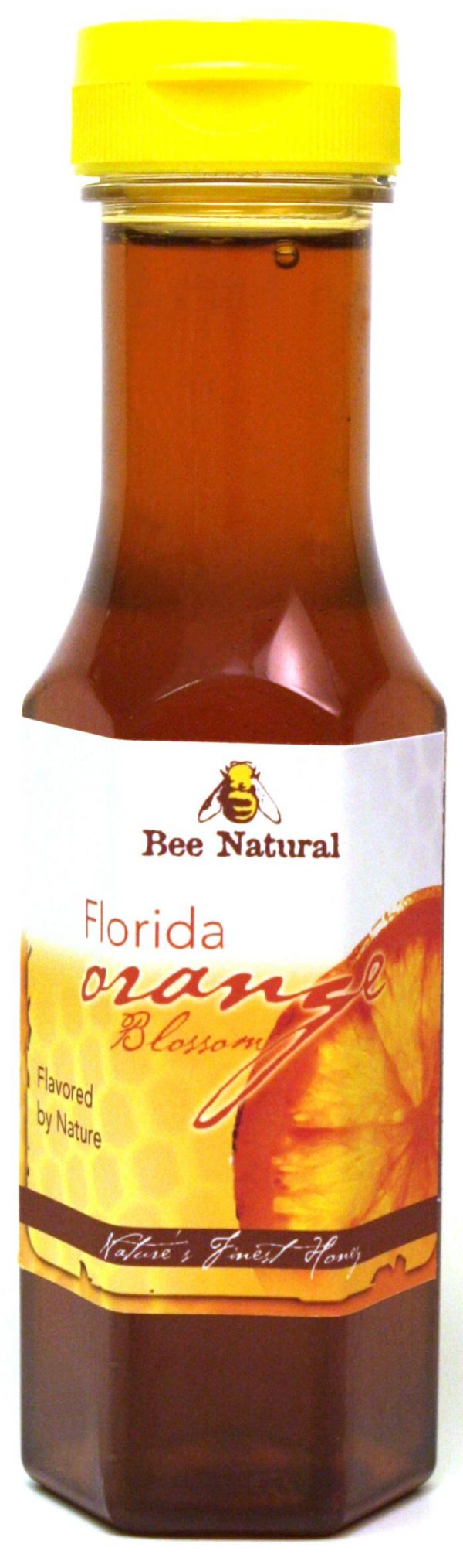 Case of 12 Orange Blossom Honey 12oz bottles 1